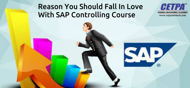 sap controlling training in noida