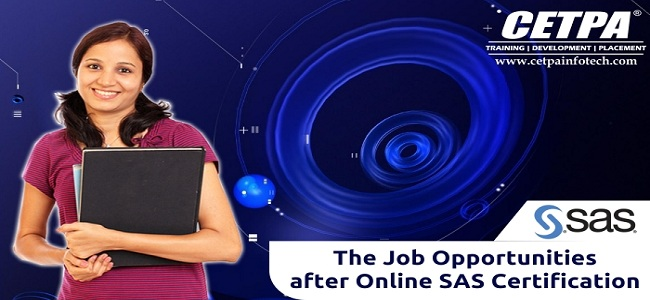 SAS Online Course In Noida