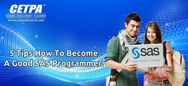5 Tips How to Become a good SAS Programmer.