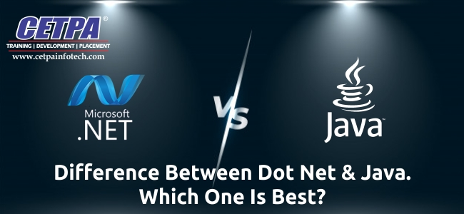 dot net vs java online course