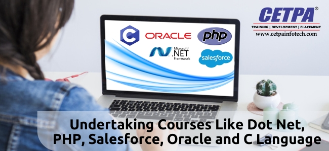 dot net online training course
